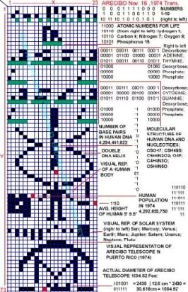 arecibo-human-template1 copia