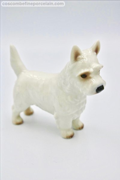 Nymphenburg Westie