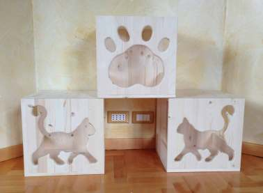 3-Cat's-Home-I