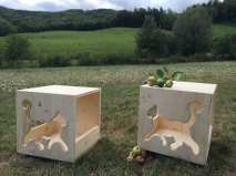 Cat's-Home-nuova-serie---gattino