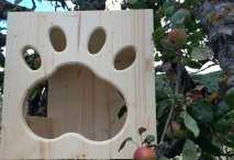 Cat's-Home---particolare-impronta