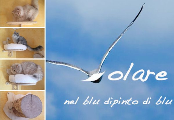 Serie-Volare climbing wall for cats