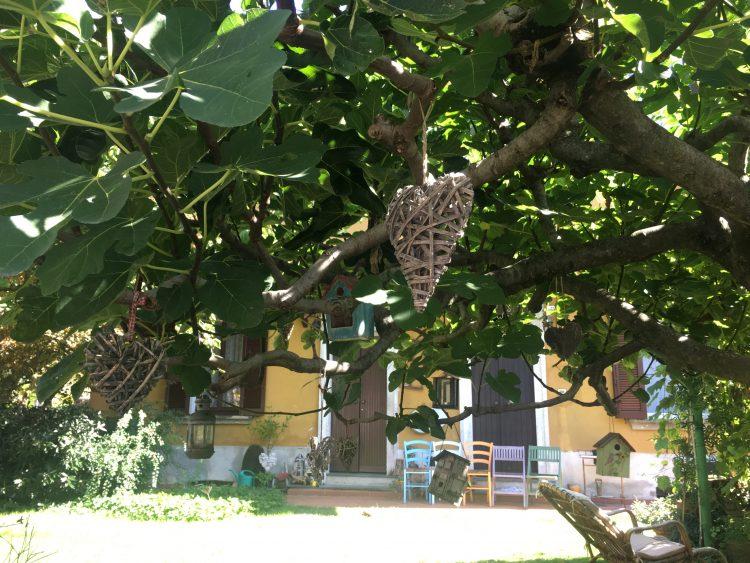 Giardino di una villetta a Crespi d'Adda