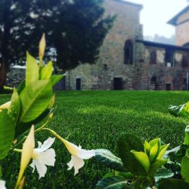 Monastero di Astino dal prato