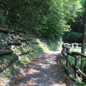 Sentiero dei Castagneti