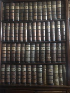 I faldoni dell'archivio di Palazzo Moroni rilegati in pelle e ordinati per numero