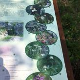 Orto Botanico, Valle del Freddo 16