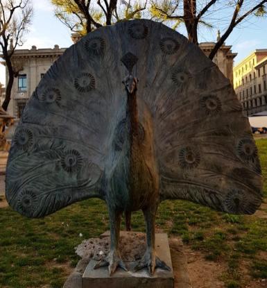 Il Pavone di Elia Ajolfi in Piazza Dante