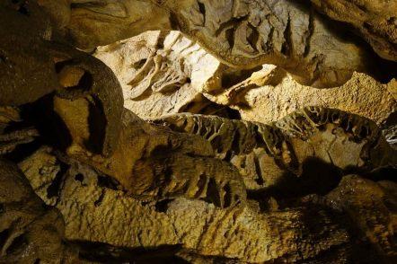 Concrezioni a vela nelle grotte del Sogno