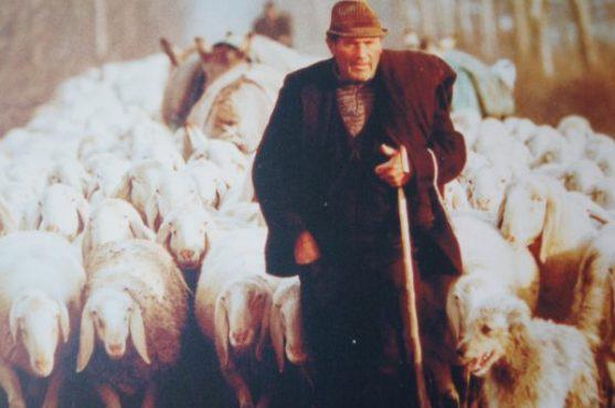 Mostra sul Pastoralismo