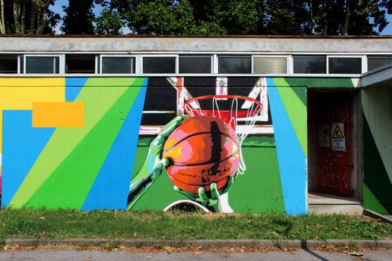 Wiz art basketball Desio