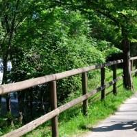 Cicloturismo a Bergamo: 6 percorsi ciclabili tra arte e natura in provincia di Bergamo