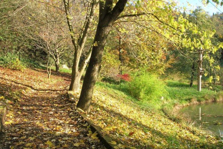 wwf valpredina in autunno
