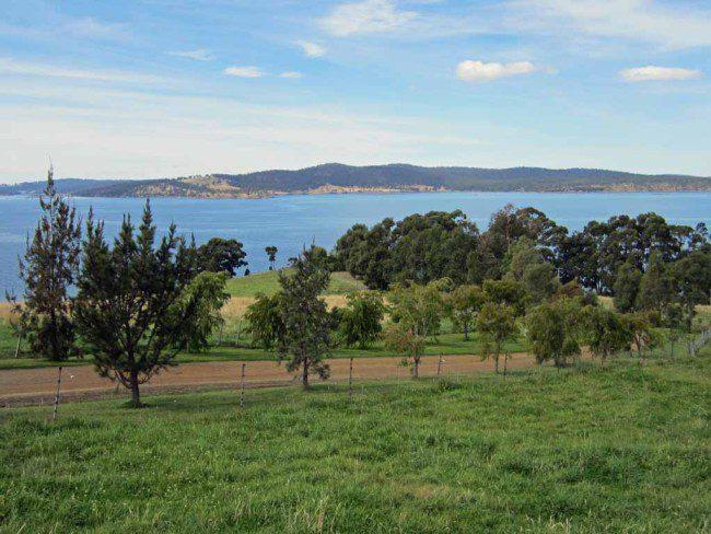 The bay in Tasmania.