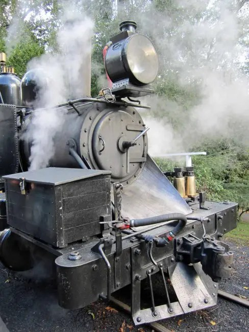 Puffing Billy train.