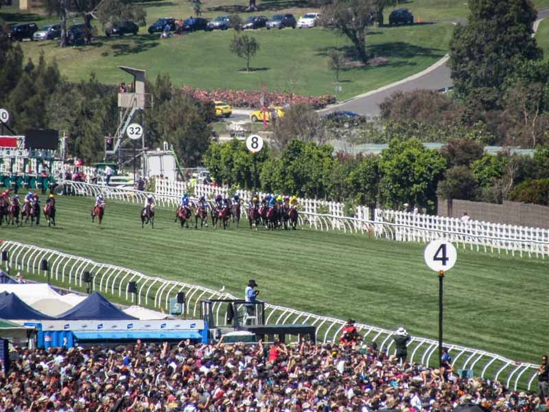 Melbourne Cup Day race.