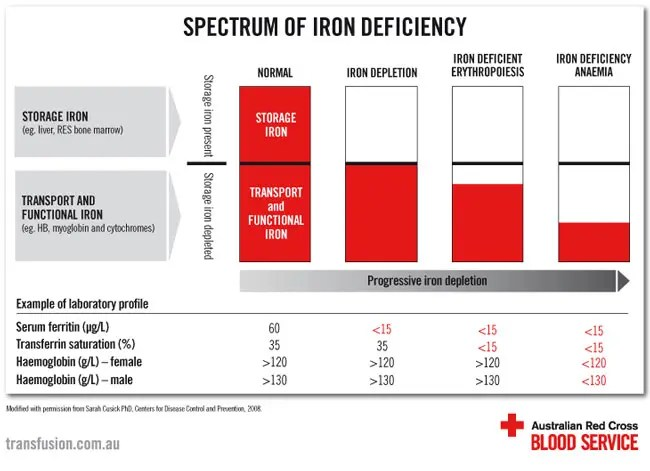 Chart of the spectrum of iron deficiency.
