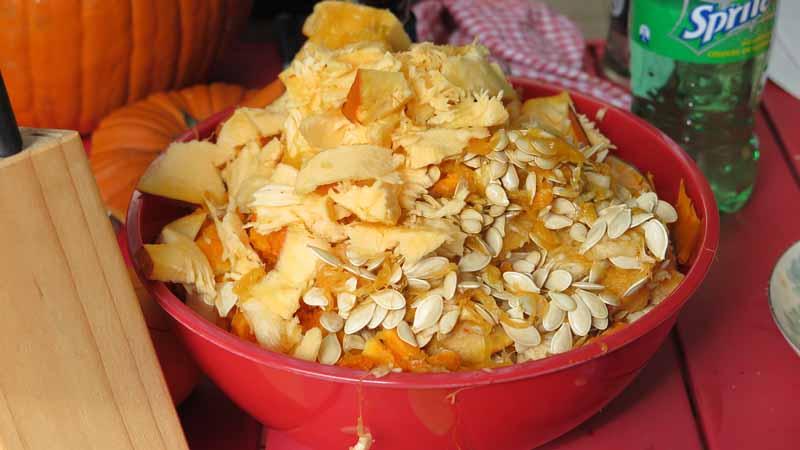 Bits of pumpkin.