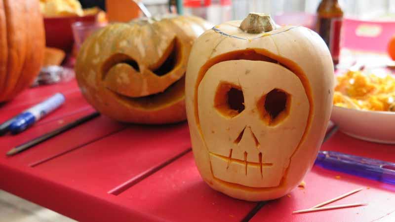 Little carved pumpkins.