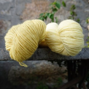 Plant Dyed Fingering Singles Yarn in bamboo yellow
