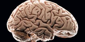 5 lucruri care contribuie la scaderea IQ-ului