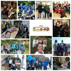 Ziua Internațională a Voluntariatului - 5 Decembrie 2016