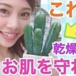 【スキンケア】キュウリじゃないよサボテンです。池田真子も愛用中インスタで話題のハクスリー(Huxley)で夏の乾燥からお肌を守る!最高級サボテンシードオイル♡ skin care