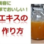 ◆酵素エキスの作り方! 【ダイエット・美・健康に!】