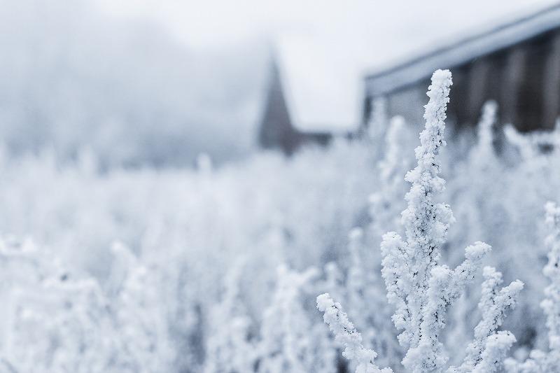 冷え性を根本的に解消する方法