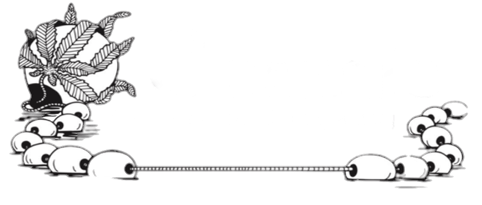 Cosmic Cannabis Company