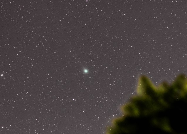 2013-02-03 Comet Lemmon 20 x 20sec, 200mm, f4/5 ISO 1600