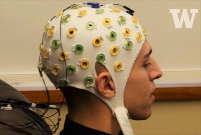 Image: Brain cap