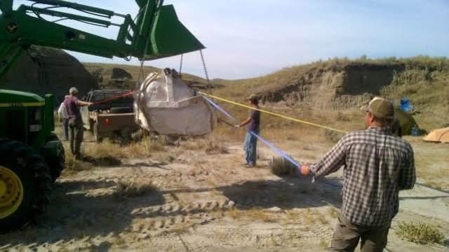 Image: Lifting T. rex skull