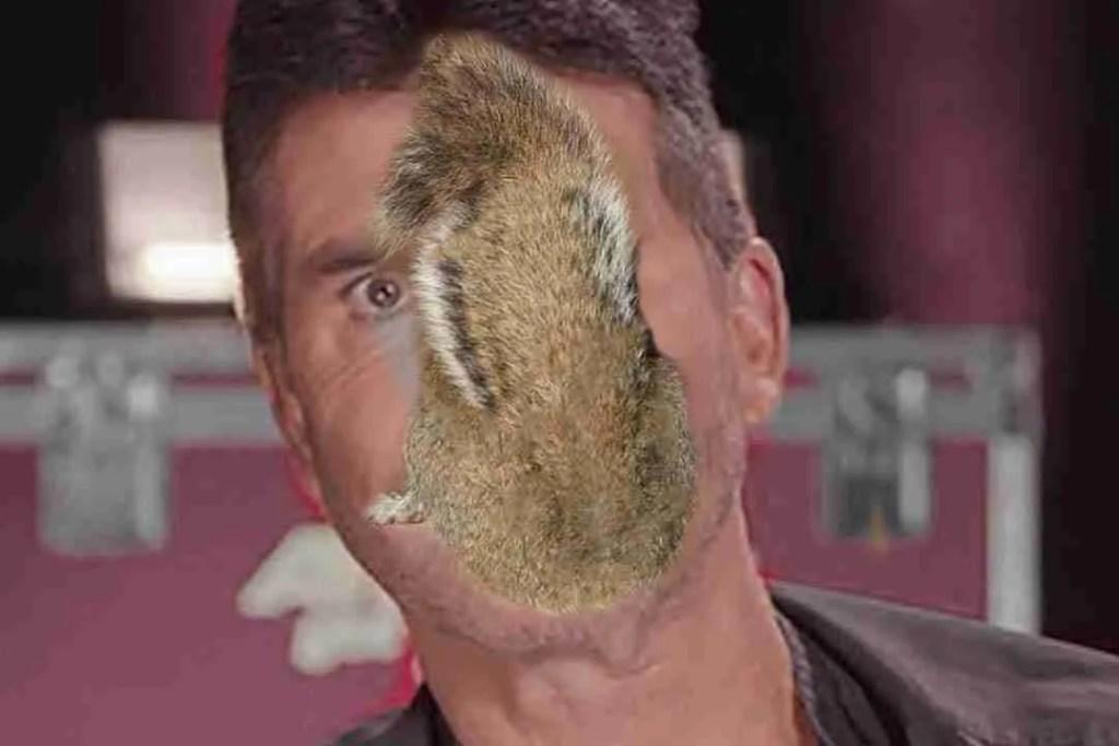 Simon Cowell Sucking a Squirrel