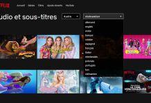Comment Changer la Langue de Netflix