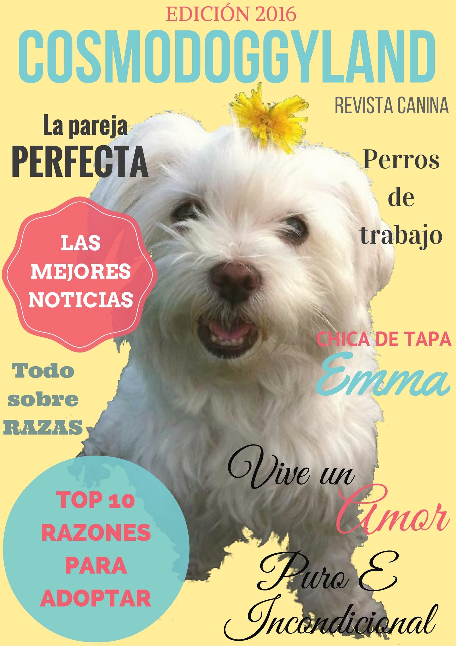 Revista Canina- Dog Magazine (Spanish). Únete a la manada y ayúdanos a hacer un mundo más pet friendly.