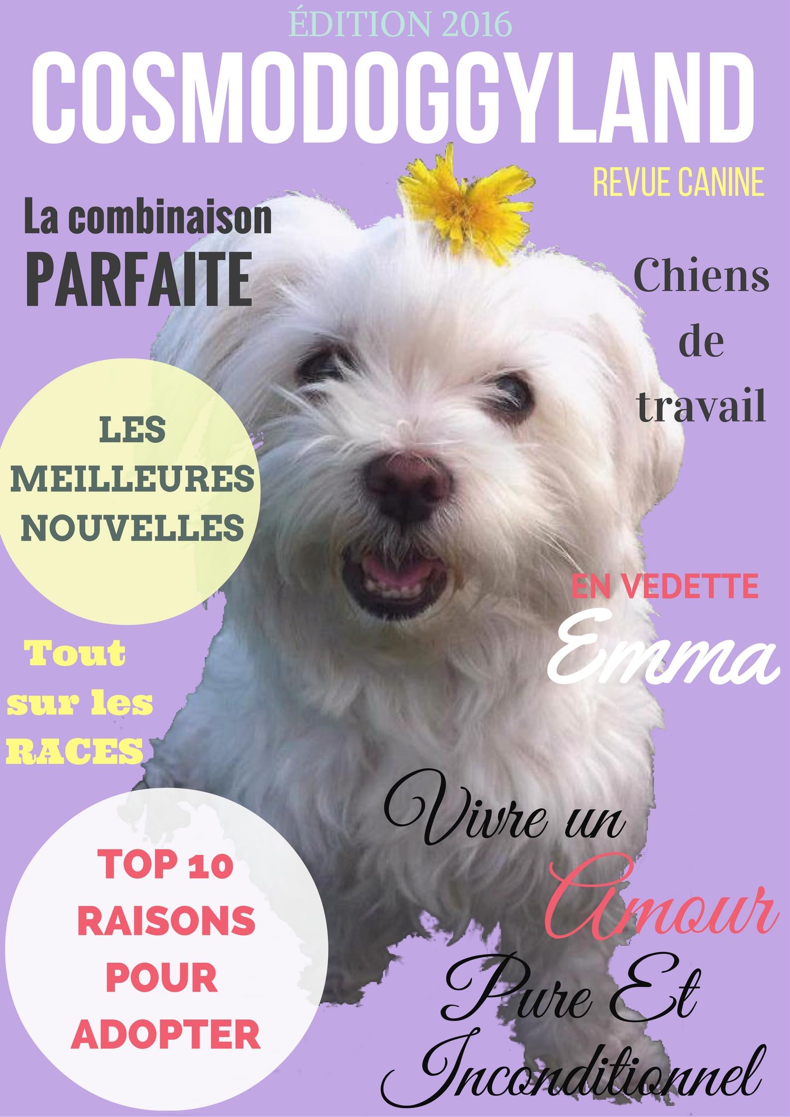 Revue Canine. Dog Magazine (French)