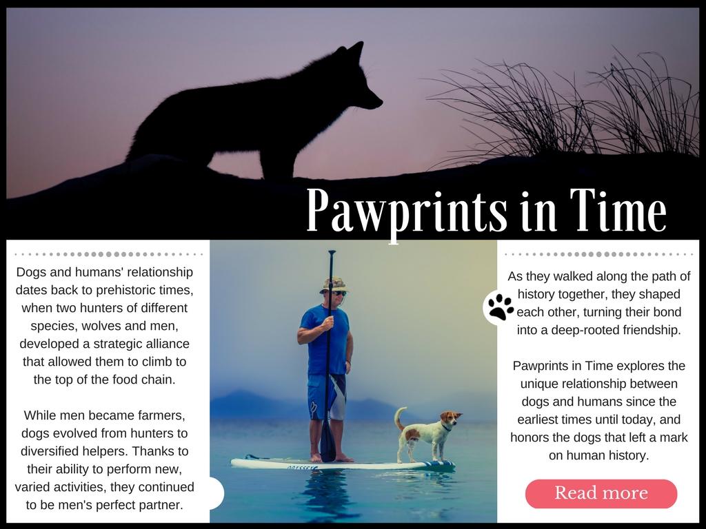 Pawprints-2Bin-2BTime.jpg