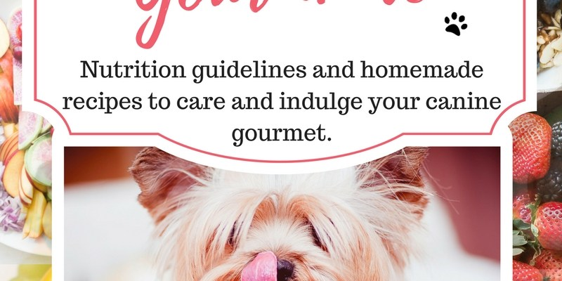 GourmPets. Nutrition guidelines and homemade recipes to care and indulge your canine gourmet.