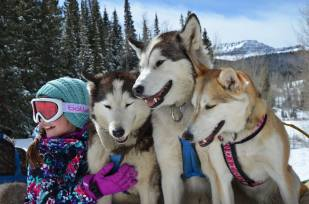 Photo credit and courtesy of Sarah Piano from Snow Buddy Dog Sled Tours
