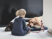 Children petting dog