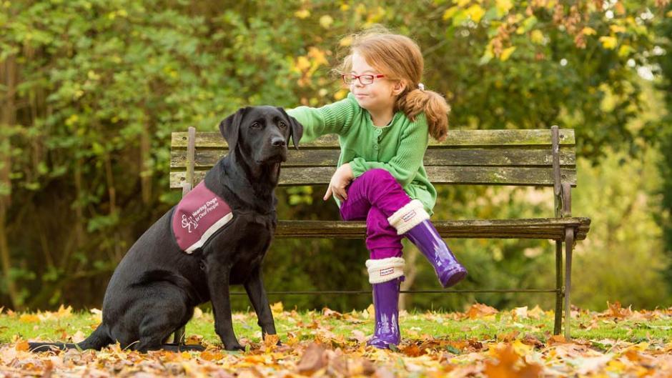 Niña sorda sentada en el parque con su perro señal