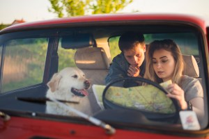 Couple looking at map with dog, traveling in car