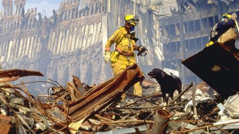 Search and rescue dog with first responder over debris at ground zero during the 9/11 twin tower attacks in New York City (nyc)