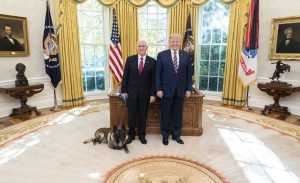 Conan Hero Dog - Honored by President Trump and Vice President Mike Pence with First Lady Melania Trump