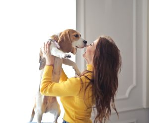 Woman kissing Beagle dog