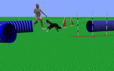 Dog Agility Techniques for Studying Course Maps
