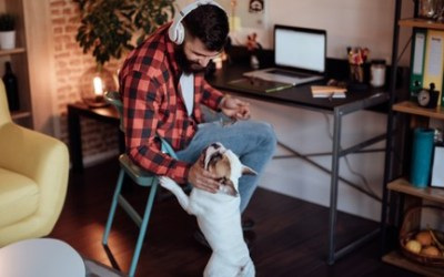 Managing Your Dog While Working From Home
