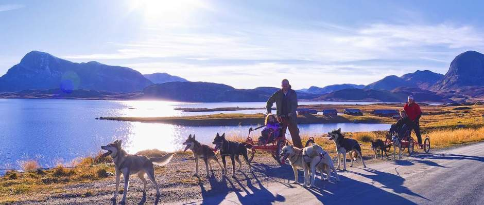 Dryland Mushing in Norway