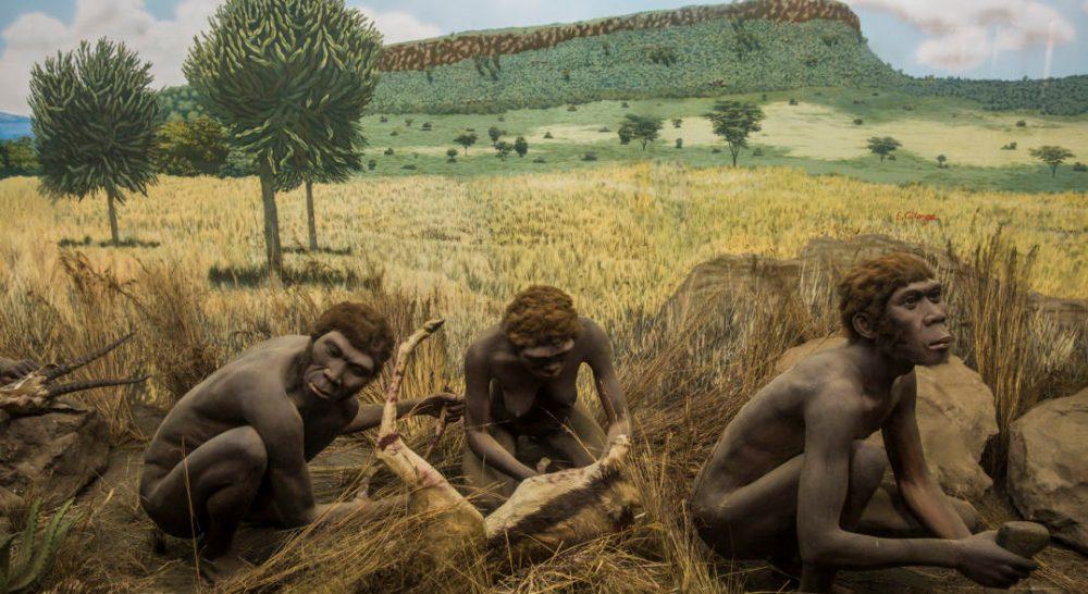 01_butchering-scene-nairobi-national-museum_ninara-cc-1-1076x807-1076x588